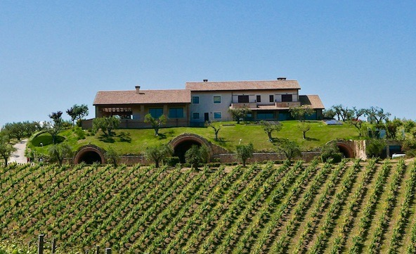 vineyards wedding venue rural Italy Abruzzo Feuduccio