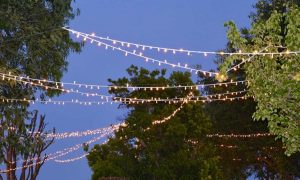 Mass overhead party lighting for romantic vineyard weddings in Italy in Abruzzo